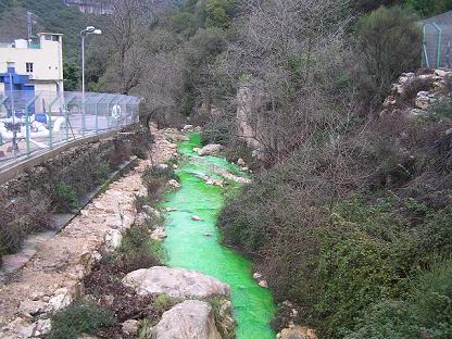 green_kziv.jpg