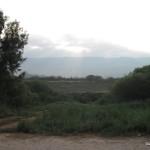 רמת הגולן מבט מגדת הירדן